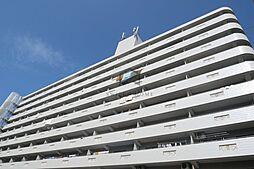 シャトー寿楽[6階]の外観