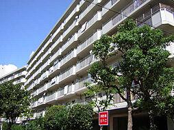 今津浜パークタウン12号(UR)[115号室]の外観