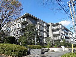 コープ野村緑山ヒルズ弐番館1階 鶴川駅バス8分