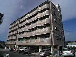 DRハウスII[6階]の外観