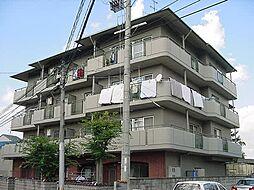 京都府城陽市寺田高田の賃貸マンションの外観