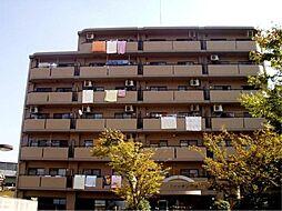 パラシオン平野[7階]の外観
