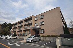 サングレイス横浜中田