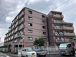 ナインティ—五熊谷・石原