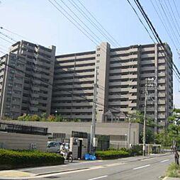 コスモシティ住吉川公園