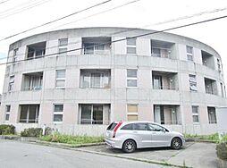 山梨県甲府市後屋町の賃貸マンションの外観