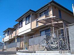 [テラスハウス] 千葉県市川市真間3丁目 の賃貸【/】の外観