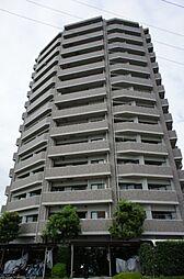 ナイスステージ宇都宮参番館 11階
