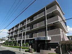 大阪府堺市堺区北庄町3丁の賃貸マンションの外観