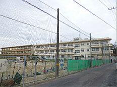 日立市立坂本中学校(316m)