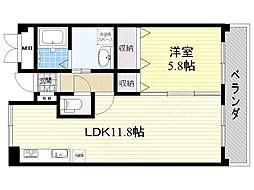 ベルフォート和泉 2階1LDKの間取り