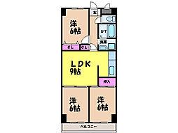 愛媛県松山市空港通7丁目の賃貸マンションの間取り