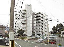 シャトレ諏訪町[605号室]の外観