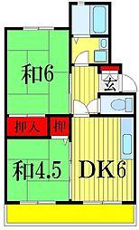 千葉県船橋市駿河台2丁目の賃貸マンションの間取り