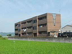 愛媛県松山市平田町の賃貸アパートの外観
