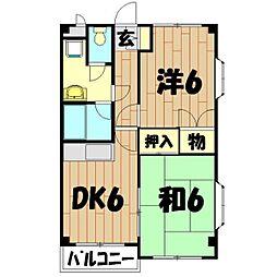 神奈川県横浜市泉区弥生台の賃貸マンションの間取り