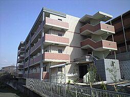 リバーコート浅香[1階]の外観