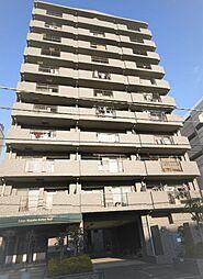 New 〜ライオンズマンション小岩第8〜 南角部屋・フルリノベ