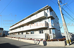 JR鹿児島本線 福工大前駅 徒歩12分の賃貸アパート