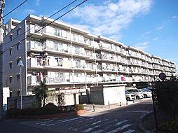 コスモ松戸