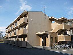滋賀県東近江市中小路町の賃貸マンションの外観