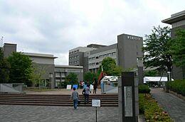 大学 東京都市大学 まで1451m