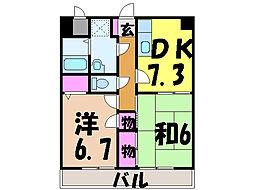 愛媛県松山市南江戸3丁目の賃貸マンションの間取り