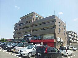 福岡県糟屋郡志免町南里4丁目の賃貸マンションの外観