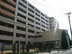 東京ナイル