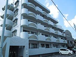 愛媛県松山市樽味4丁目の賃貸マンションの外観
