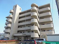 愛媛県松山市南江戸5丁目の賃貸マンションの外観