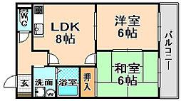 兵庫県伊丹市寺本東1丁目の賃貸マンションの間取り