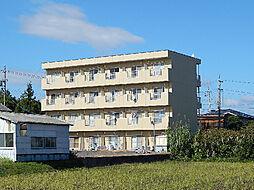 コーポベル[4階]の外観