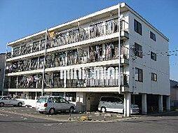 サンホーム愛宕[4階]の外観