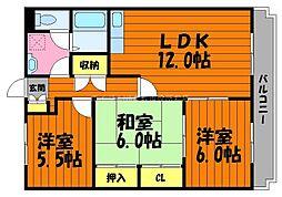 岡山県倉敷市白楽町丁目なしの賃貸マンションの間取り