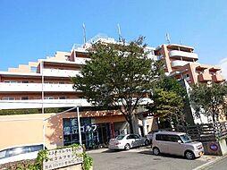 神奈川県藤沢市善行2丁目の賃貸マンションの外観