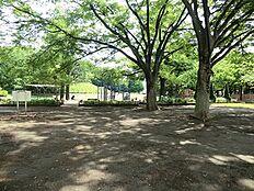 周辺環境:玉川野毛公園