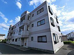 京成本線 公津の杜駅 徒歩14分の賃貸マンション