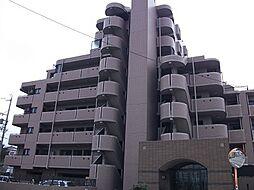 マルベリー田県