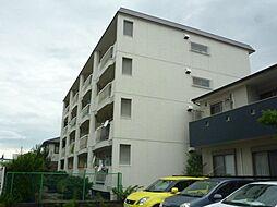 愛知県名古屋市西区市場木町の賃貸マンションの外観