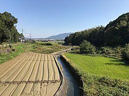 徳島県徳島市国府町西矢野