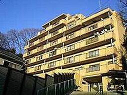 CASSIA保土ヶ谷(旧日宝コートヒルズ保土ヶ谷)[0701号室]の外観