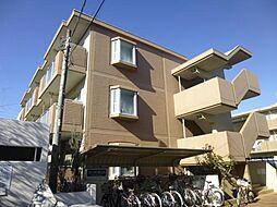 千葉県市川市平田2丁目の賃貸マンションの外観