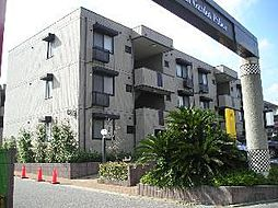 八千代台南ガーデンパレスA棟[303号室]の外観