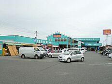 道の駅おさかなセンター(366m)