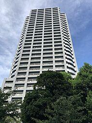 カデンツァ・ザ・タワー