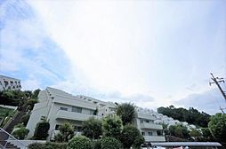 「読売ランド前」駅歩10分「ペット可」「ルーフテラス」付