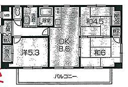 兵庫県姫路市大津区平松の賃貸マンションの間取り