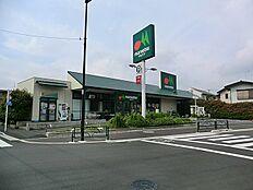マルエツ 伊興店(230m)