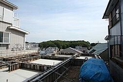 神奈川県横浜市神奈川区三ツ沢上町